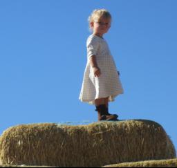 Willow at Pumpkin Patch - 24OCT17
