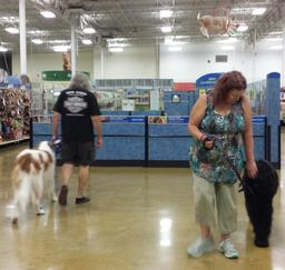 Penny assisting at PetsMart - 17SEP16