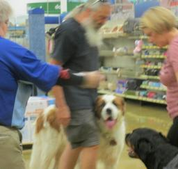 Penny assisting at PetsMart - 24SEP16