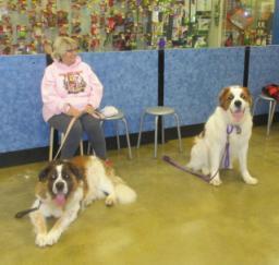 Penny assisting at PetsMart - 17JAN18