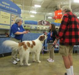 Penny assisting at PetsMart - 17APR18