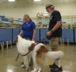 Penny assisting at PetsMart - 01MAY18