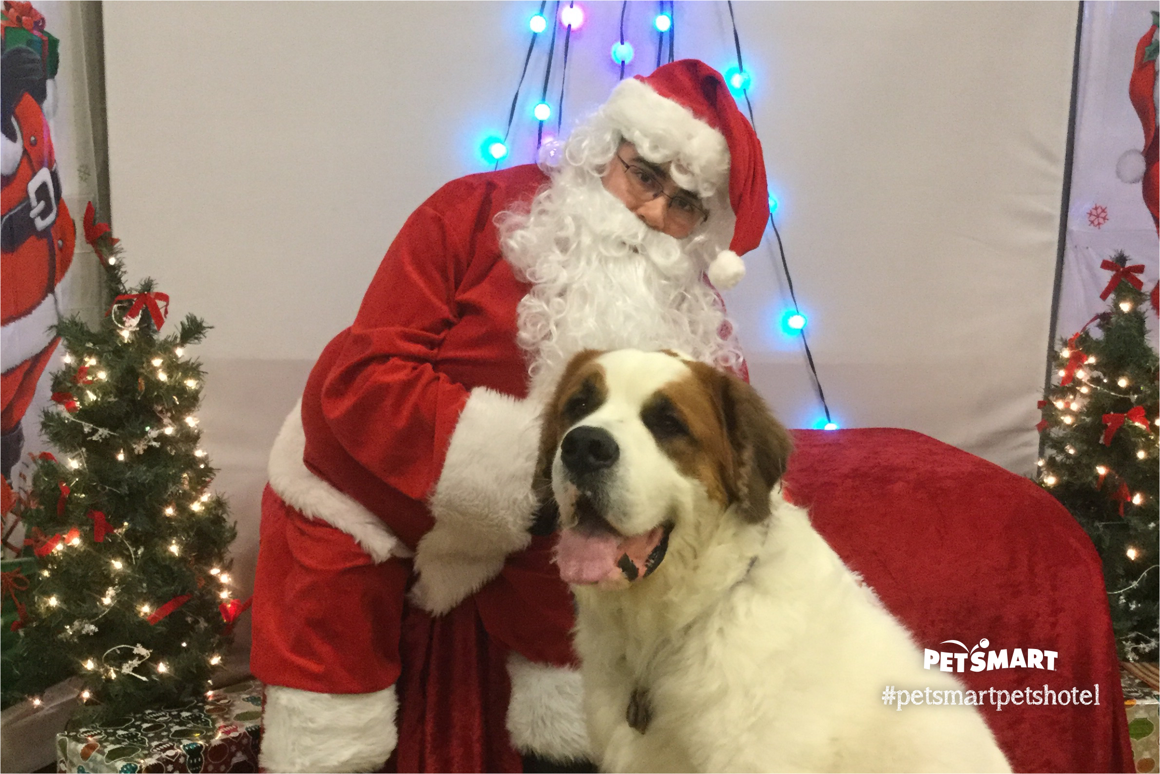 Petsmart Christmas Eve Hours.Penny Petsmart Assisting