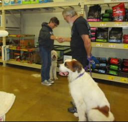 Penny assisting at PetsMart - 11NOV18