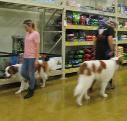Penny assisting at PetsMart - 20JAN19