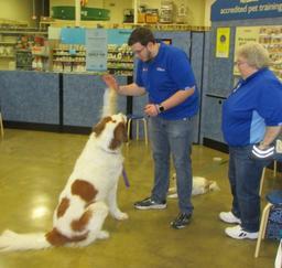 Penny assisting at PetsMart - 19FEB19