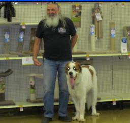 Penny assisting at PetsMart - 16MAY16
